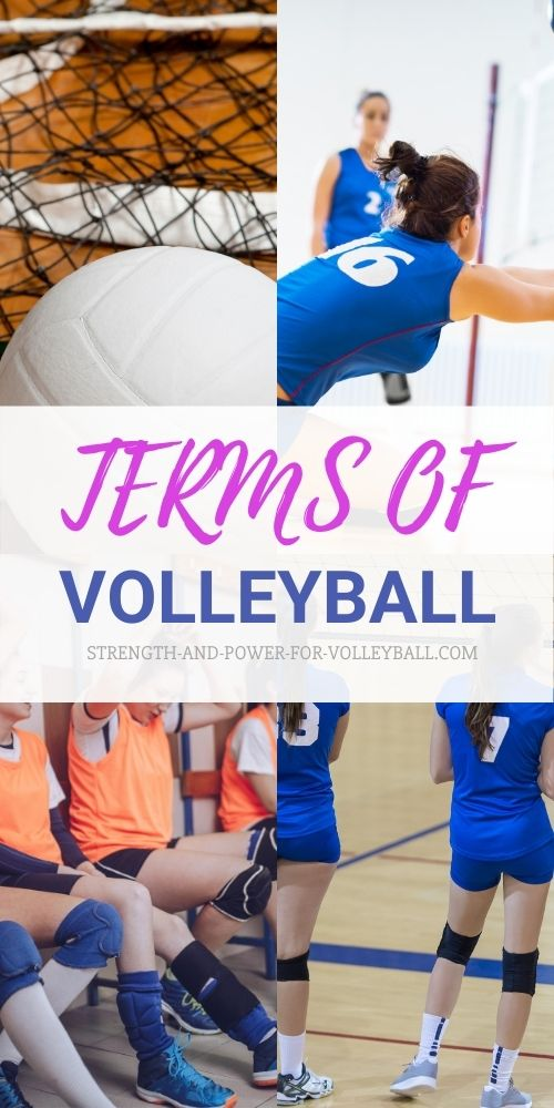 Basic Terms of Volleyball
