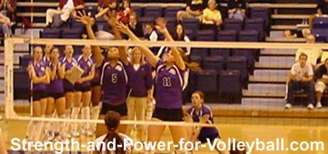 Volleyball Dig
