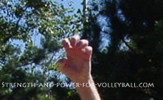 Volleyball tips for defense camel poke